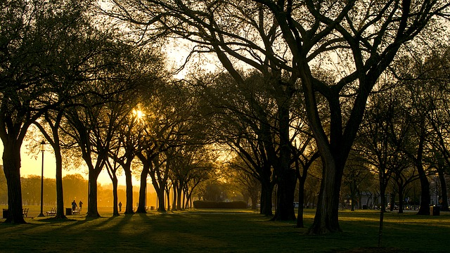 manfaat olahraga jalan kaki pagi hari yang baik bagi kesehatan tubuh