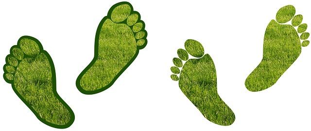 manfaat jalan kaki untuk tubuh sehat