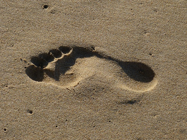 manfaat jalan kaki bagi orang gemuk
