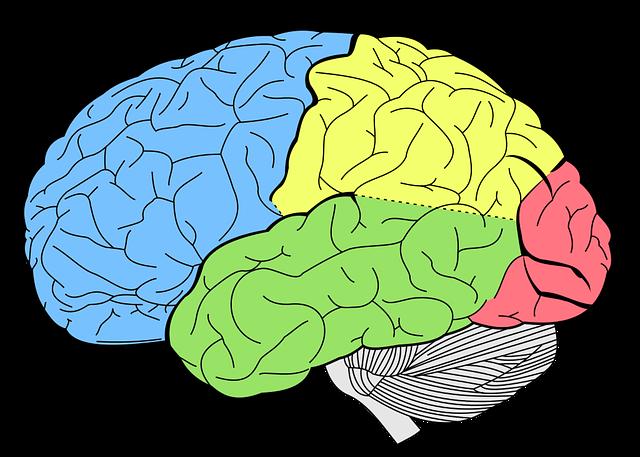 manfaat jalan kaki untuk otak manusia