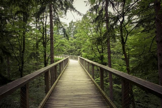 apakah jalan kaki bisa mengecilkan perut anda