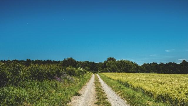 manfaat berjalan kaki jarak jauh untuk tubuh dan mental