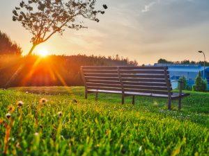 manfaat jalan kaki pagi agar tubuh sehat bugar