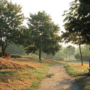 terapi jalan kaki untuk kesehatan